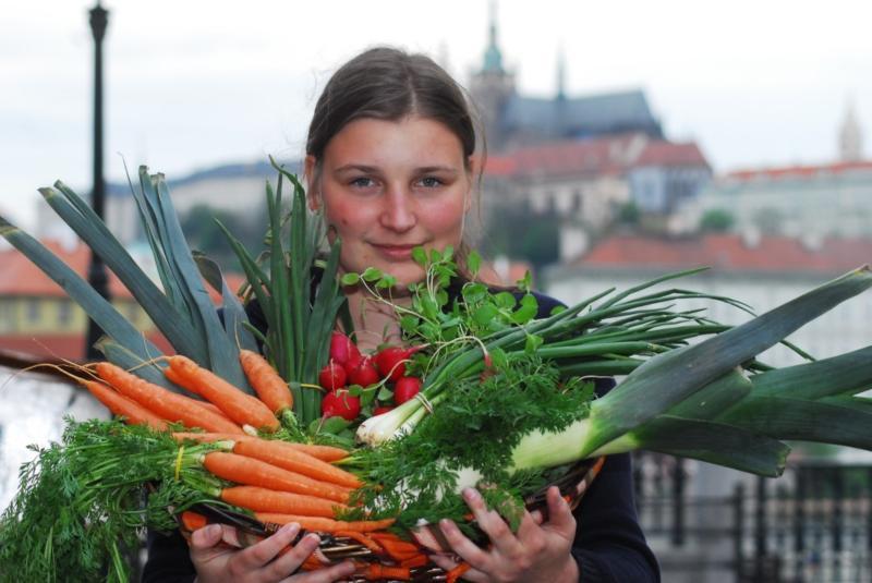 Farmářské trhy Strakonice  2012
