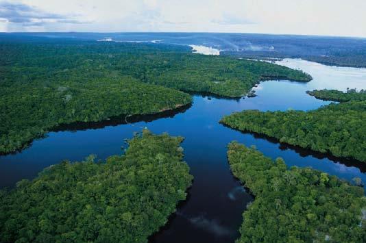 Cesta do Amazonie